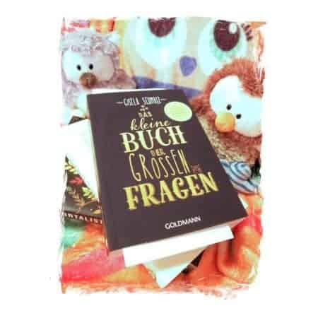 Gisela Schmalz Das kleine Buch der großen Fragen