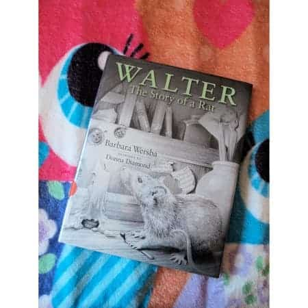 Barbara Wersba,  Donna Diamond: Walter – The Story of a Rat
