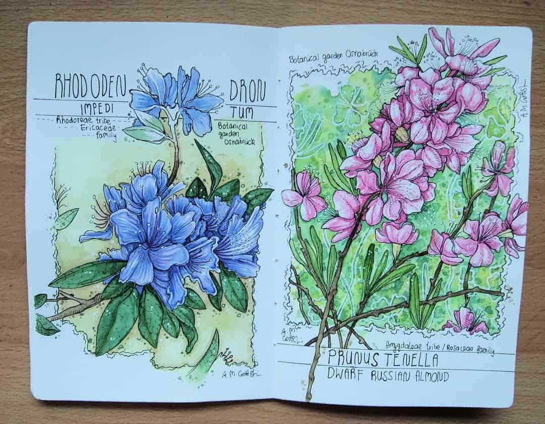Wasserfarben Bild Blumen