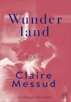 Claire Messud: Wunderland